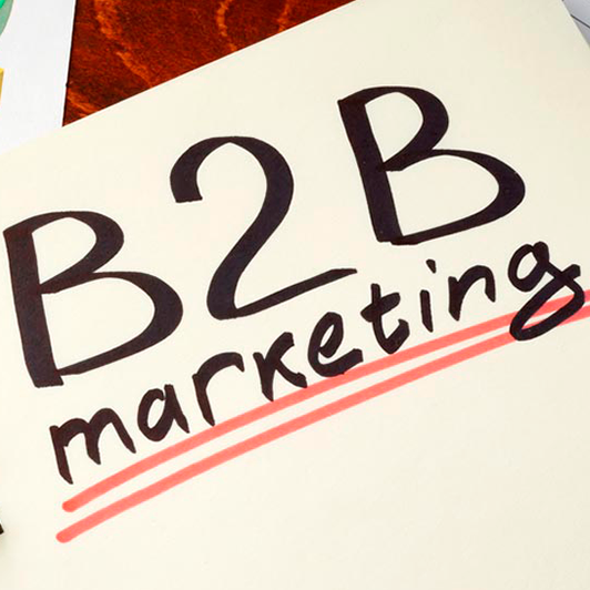 ¿Marketing B2B on line?
